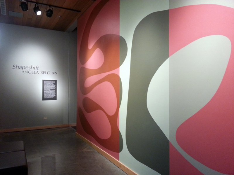 Shapeshift Installation at the Longmont Museum