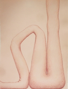 "Untitled-pink, 17"" x 12.5"", colored pencil on paper, 2004"