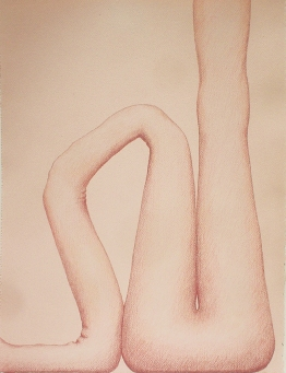 """Untitled-pink, 17"""" x 12.5"""", colored pencil on paper, 2004"""