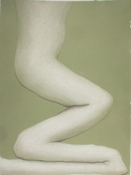 "Untitled-green and white, 17"" x 12.5"", colored pencil on paper, 2004"